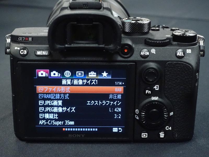 a7riii-10.jpg