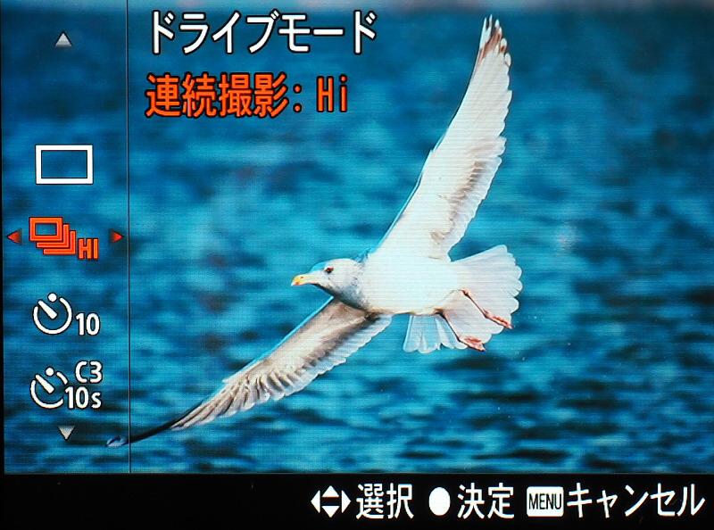 012_o.jpg